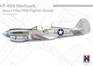 NEW! Hobby 2000 48001 P-40N Warhawk Aces of the 49th Fighter Group