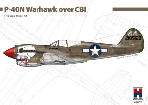 NEW! Hobby 2000 48002 P-40N Warhawk over CBI